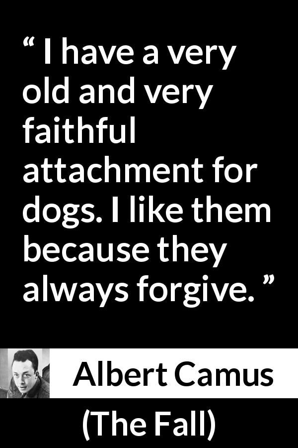Albert Camus About Forgiveness The Fall 1956 Philosophy Quotes Life Lesson Quotes Inspirational Quotes Collection