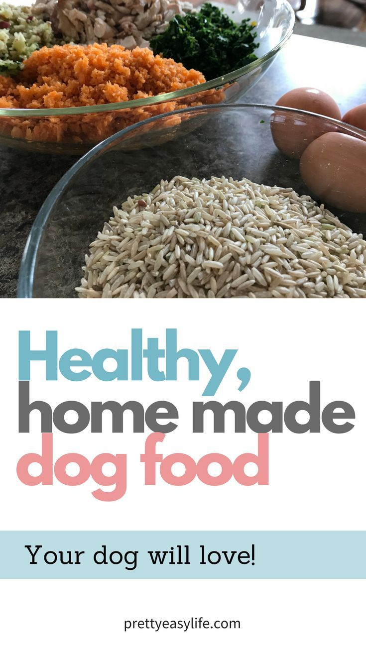 Healthy, home made dog food that your dog will love! Cheaper option!