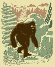 Anomalous Observational Phenomena  per cognitionem veritatis: On the heels new bigfoot footage lastest sasquatch...