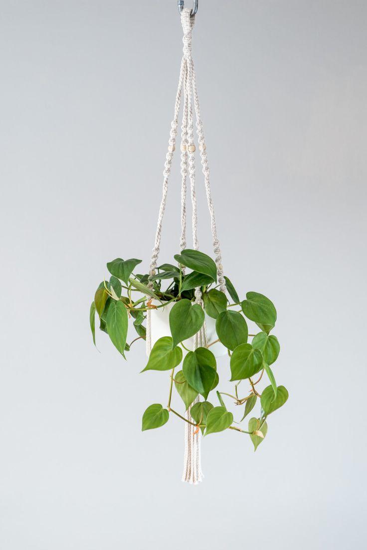 les 25 meilleures id es de la cat gorie plantes suspendues sur pinterest jardini re suspendue. Black Bedroom Furniture Sets. Home Design Ideas