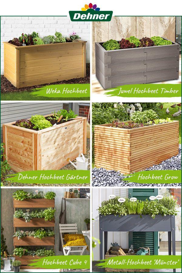 Pin Auf Gartengestaltung Die Grundlagen