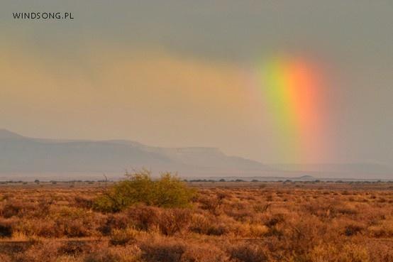 Desert Rainbow.