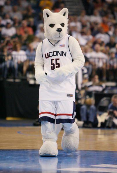 Jonathan the Husky #uconnhuskies #bleedblue