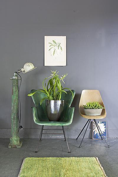 Wat is er mooier dan je te omringen met levend groen? VTwonen