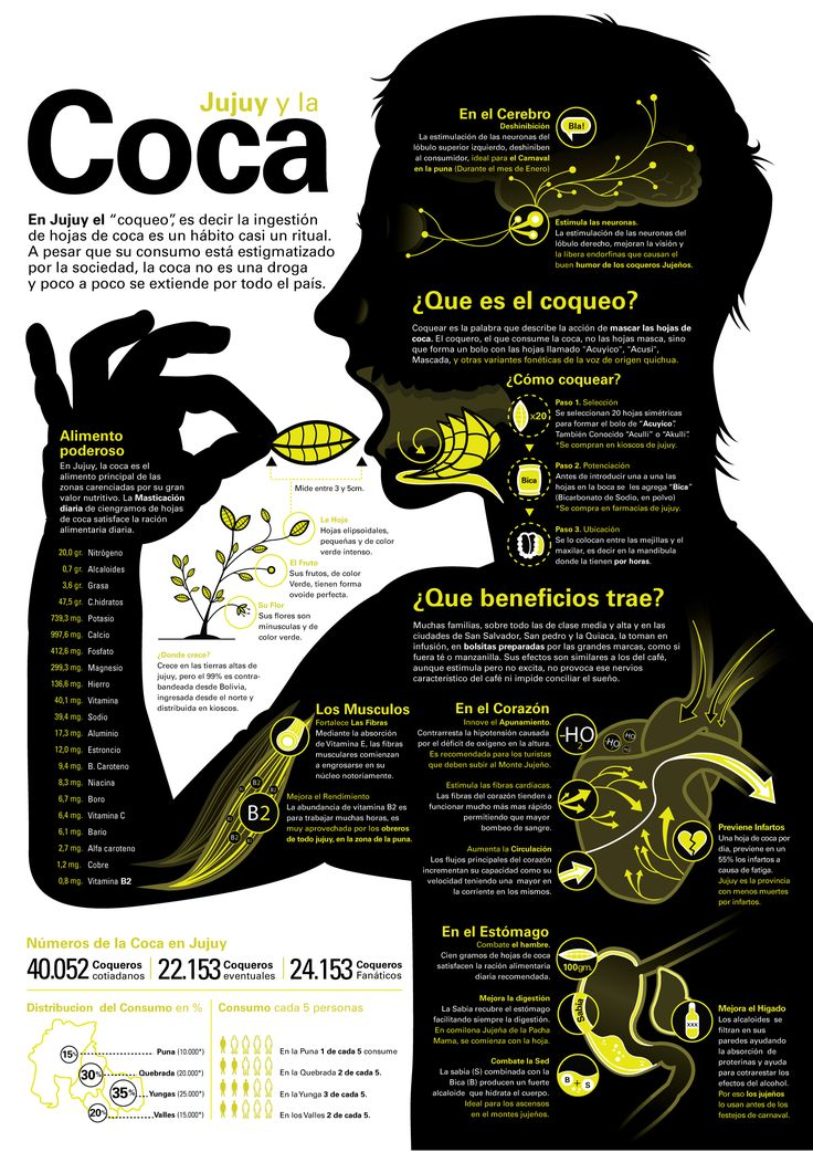 Hoja de Coca - Infografia This world is really awesome. The woman who make our chocolate think you're awesome, too. Please consider ordering some Peruvian Chocolate today! Fast shipping! http://www.amazon.com/gp/product/B00725K254
