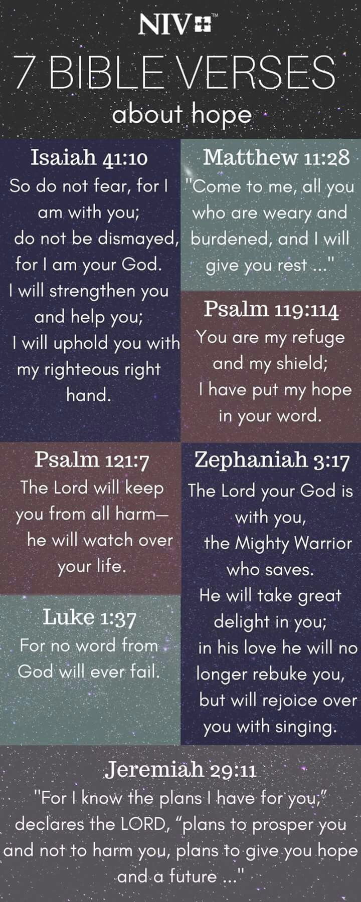 Pin By Cynthia Thomason On Bible Verses Bible Verses Bible Bible
