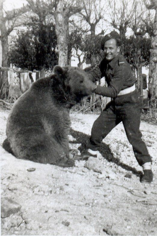 Wojtek the Bear: Surprising World War II Animal Hero