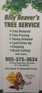 Billy Beaver's Tree Service