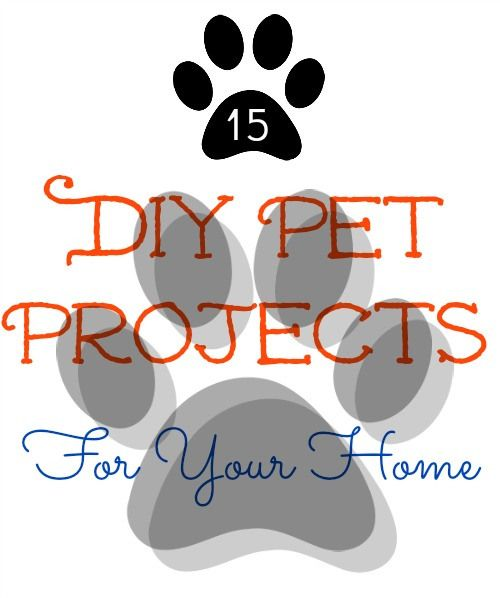 15 DIY Pet projects for your home.  Projects and Recipes.  Cats and dogs.  sewlicioushomedecor.com