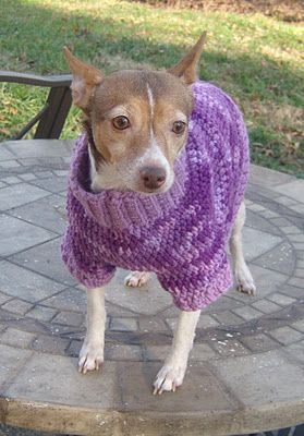 A Dog In A Sweater: Multi-color Dog Sweater