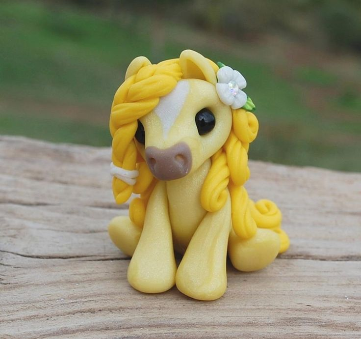 Yellow Sugar Wee pony - 2016