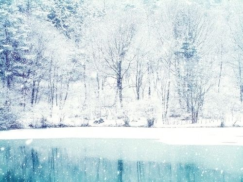 white christmas: Inspiration, Nature, Beautiful, Snow, Winter Wonderland, Christmas, Lake, Places, Photography