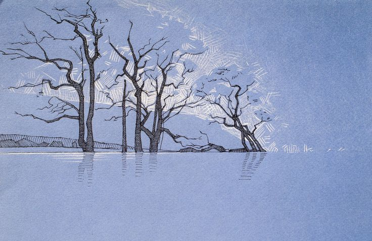 #water #trees #sketch