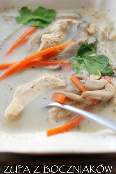 Zupa z boczniakow