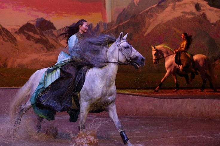 Artist performs during the Cavalia Horse Show Extravaganza Horse Shows & Performances Learn about #HorseHealth #HorseColic www.loveyour.horse