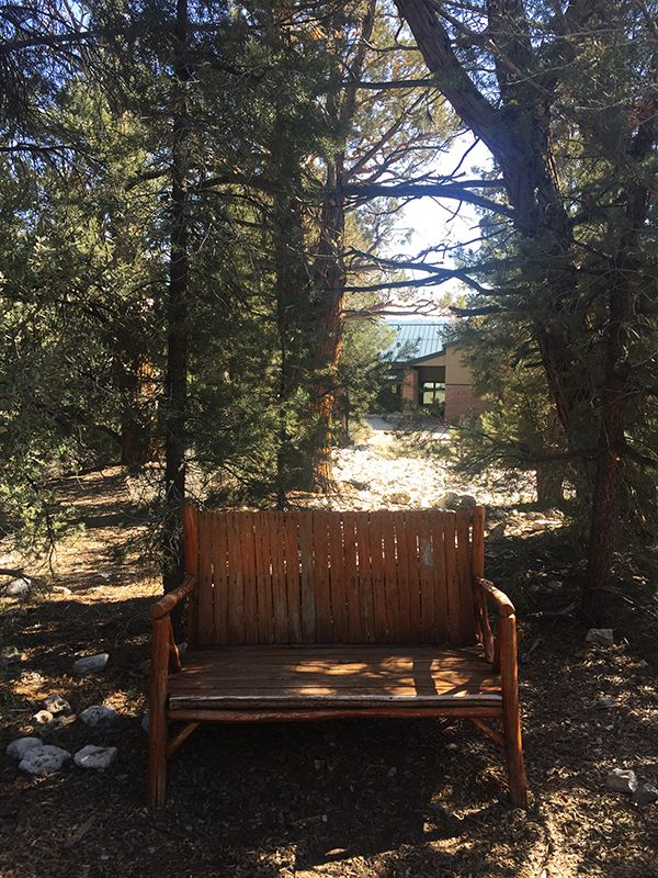 Big Bear Discovery Center Fawnskin Ca Easy Peasy Clemons Squeezy Big Bear Little Cabin Discovery