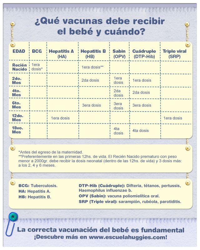 Cuando de la salud de tu bebé se trata te damos una gran mano. ¡Aquí te dejamos el calendario de vacunación que debes tener en cuenta durante el crecimiento de tu hijo!