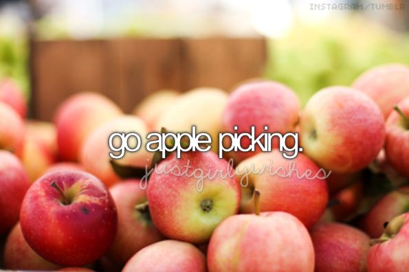 Went apple picking for the first time last year since I was a child