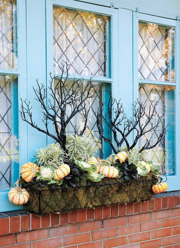 Unusual Fall Window Box with Eerie Branches.