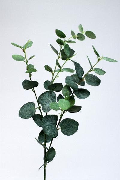 Frunze si crengi artificiale Crenguta de Eucalipt 80 cm HO