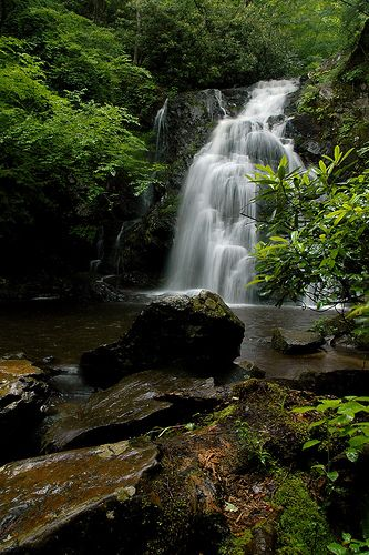 I need to be here soo bad right now !! Smoky Mountains in Tennessee❤️