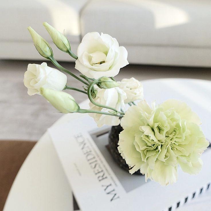 c_u_c_k_o_o | My Residence | Flowers | Spring mood