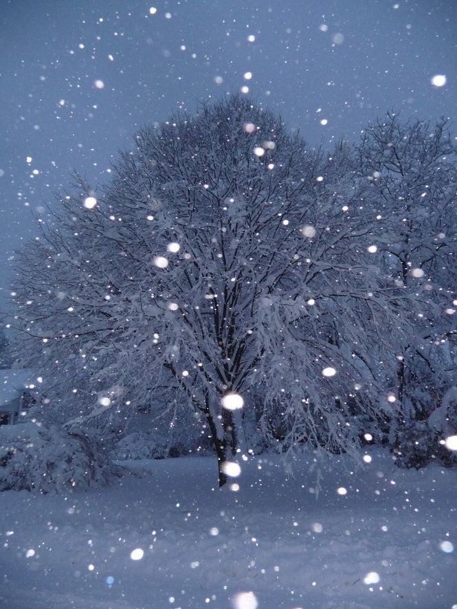 17 Best Images About Snow Scenes On Pinterest
