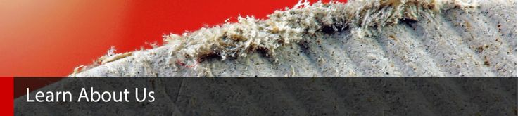 #asbestos #asbestosremovalmelbourne #asbestosremoval #melbourne
