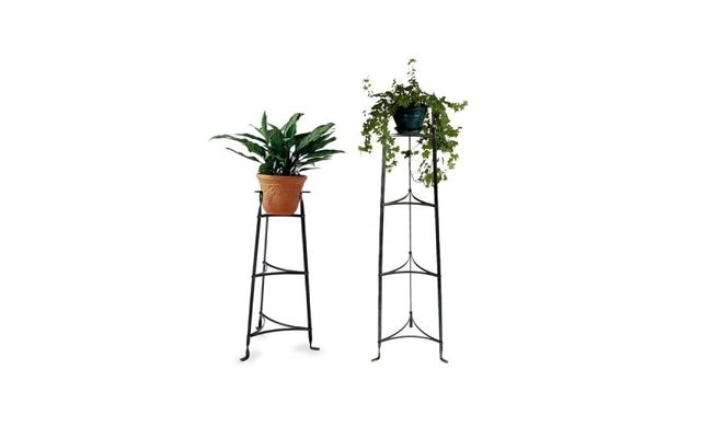 1000 Images About Plant Table On Pinterest Ideas For