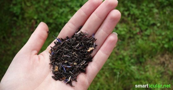 Natürlichen Tee aus lokalen Zutaten selber machen