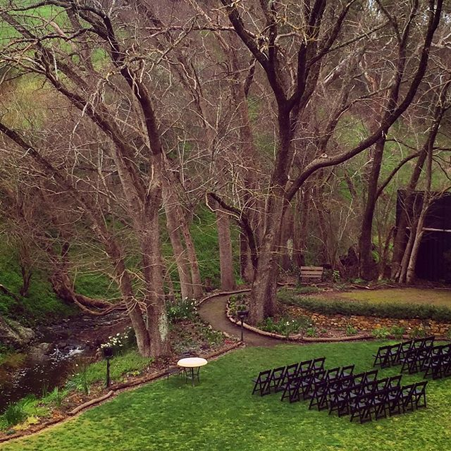 Even without their leaves the Elm trees still provide a stunning backdrop for weddings in winter #inglewoodinn #adelaidehills #winterwedding #adelaideweddings