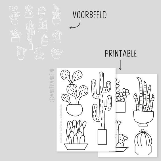 Cactus raamtekening