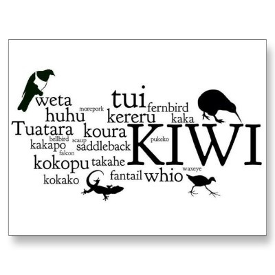 New Zealand kiwiana animal postcard