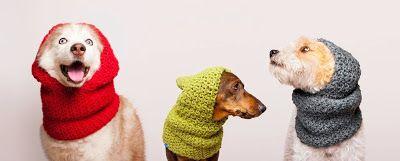 Cuellos para perro con capucha de lana modelo Suecia