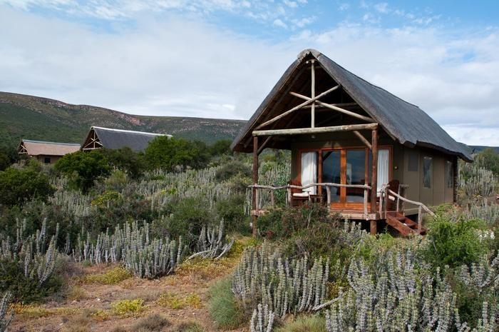 Koffylaagte Game Lodge and Safari Tents, Karoo: http://www.lekkeslaap.co.za/akkommodasie/koffylaagte-game-lodge-and-safari-tents