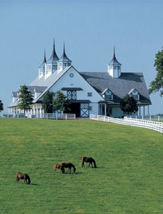 Stables in Kentucky...