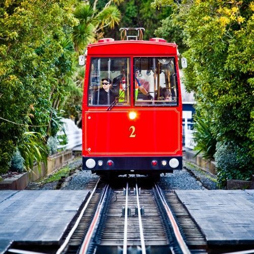 If you are in Wellington, a ride on the Cable Car is a must do. There's a great playground just a short walk from the top too!