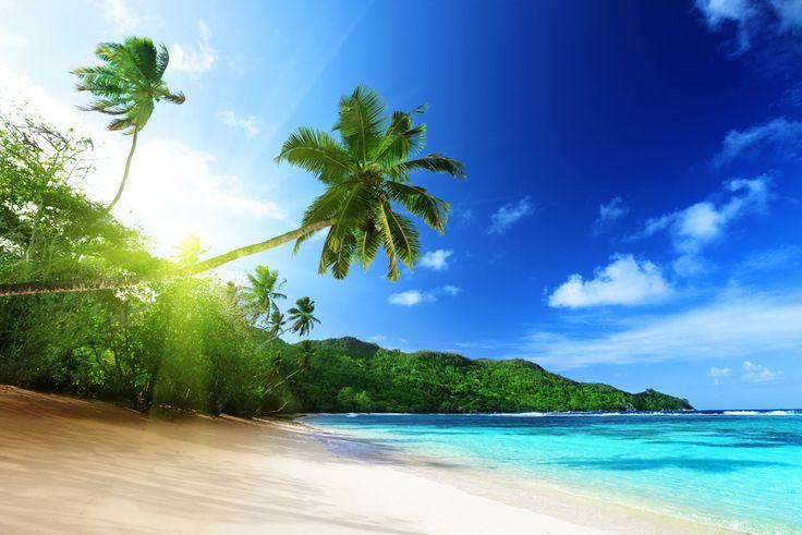 Divine Destinations LLC Explores The Seychelles Islands – A World ...