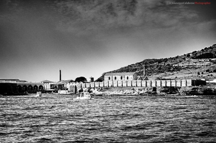 Sicilia Isola di Favignana Arcipelago delle Isole Egadi Trapani