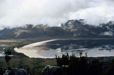 Lake Pedder shoreline - Olegas Truchanas