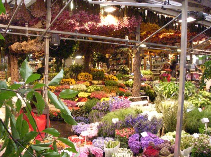 Blumenmarkt Amsterdam, Foto: S. Hopp