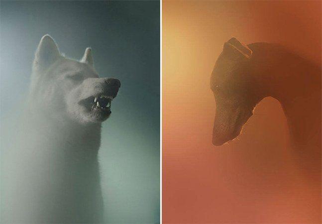 """O fotógrafo Martin Usborne já nos tinha deixado emocionados com a série de fotos retratando o silêncio dos cães esperando por seus donos (vejaaqui) e agora não fez por menos: um ensaio onde ele cria diferentes retratos de cães abandonados e nos faz pensar sobre a própria condição humana. Certamente já aconteceu com você – um dia de maior ou menor felicidade em que alguém lhe pergunta: """"Como está?""""; você responde intuitivamente """"Estou bem, obrigado"""". Quanto pode estar escondido por trás de…"""