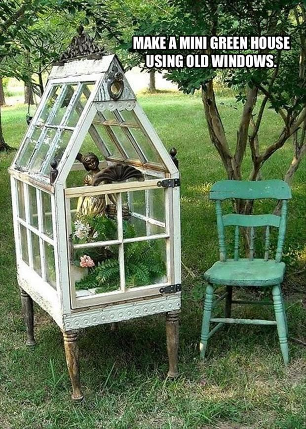 A MINI GREEN HOUSE OUT OF OLD WINDOWS