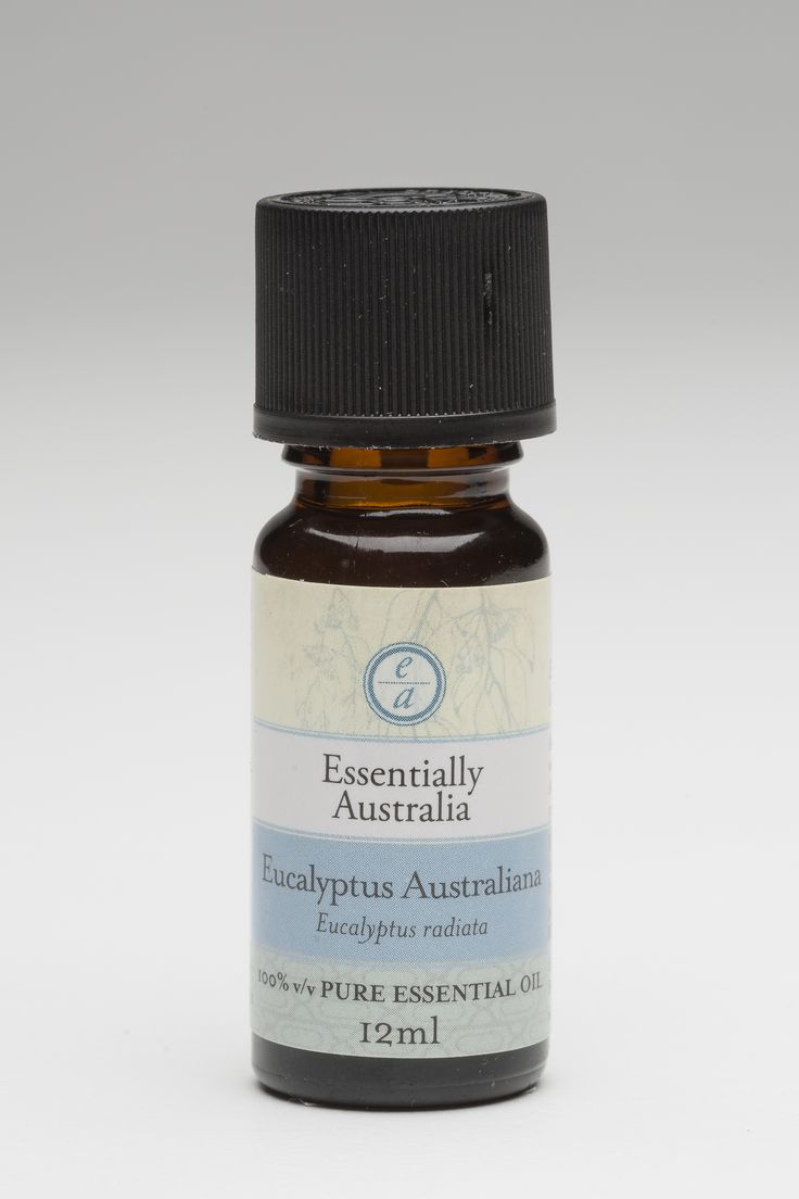 Eucalyptus Australiana (Eucalyptus radiata)  A fresh, fruity Eucalyptus, the best Eucalyptus aroma ever! Its just as effective also. Great for bringing fresh air into the room and assisting breathing.