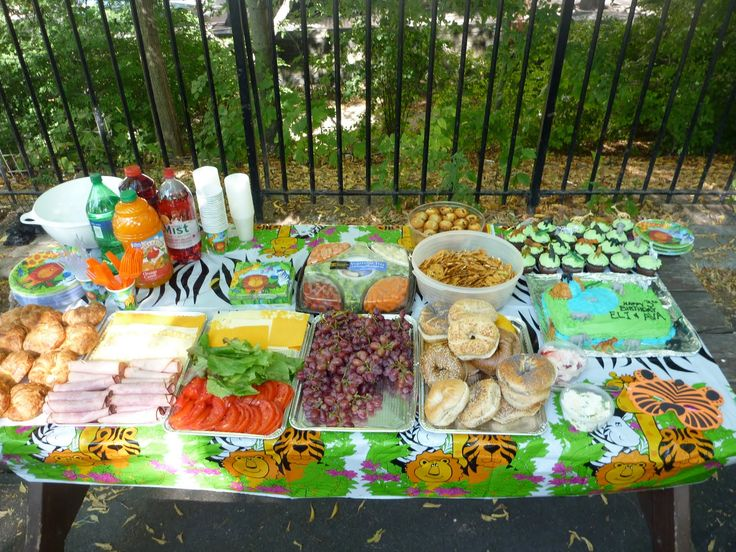 Safari Birthday Party Long