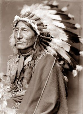 This picture is of Whirling Horse. I consider this photograph to be a classic, and shows the man with full head dress, buckskin clothing, and blanket. It is believed that Whirling Horse was a member of a Wild West Show, possibly Buffalo Bill Cody's. So, in looking at the picture we must wonder whether this is the way he looked as a traditional Indian person, or whether this is how Buffalo Bill told him he should dress for the show.