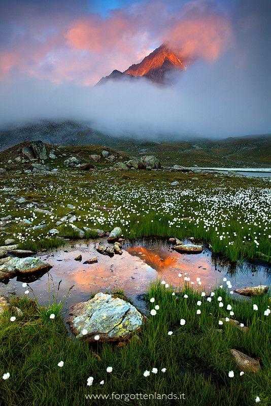 ~~The garden of the king ~ misty sunset, Valtellina, Italian Alps by Andrea Pozzi~~province of Sondrio, Lombardy