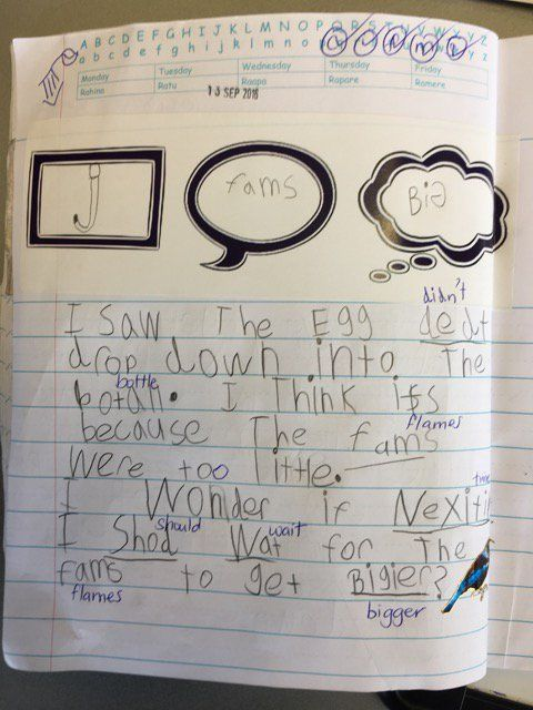 """Pam Hook on Twitter: """"Fab thinking from 5yo scientists about unexpected outcomes…"""