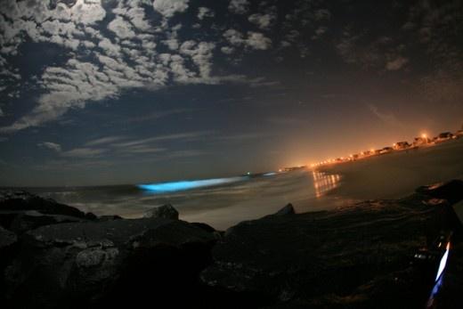 Milky -Sea due to plankton on the coastline
