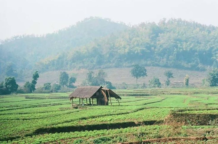 Mitch Michael, Northern Shan State Trek (Hsipaw): Top Tips Before You Go | UPDATED 2017